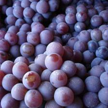 Grapes - Touring Amador County & Shenandoah Valley Wine country