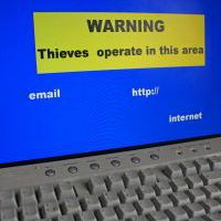 Thieves on the Internet